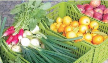 qualidade e segurança alimentar